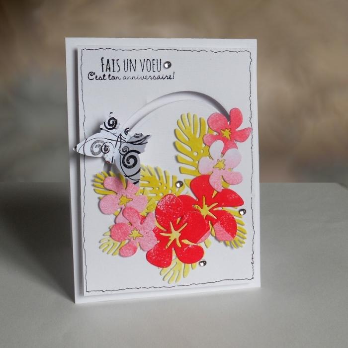 Carte Maniak131 - DSCN4875
