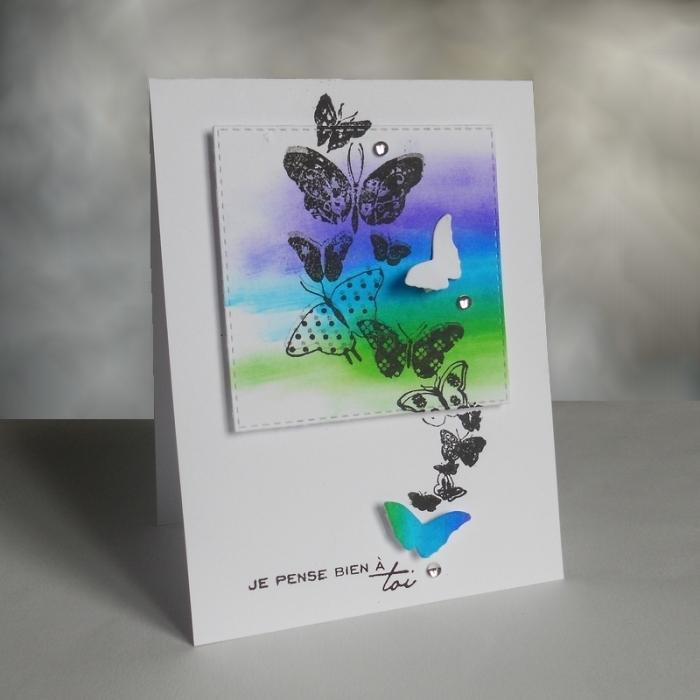 Carte JUGS351 - DSCN5279