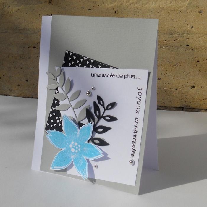 Carte ColourQ354 - DSCN5546