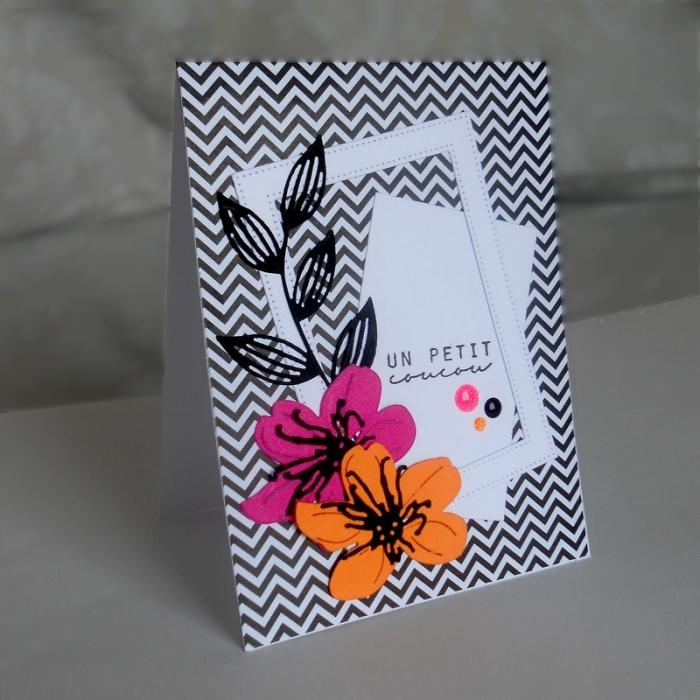 Carte ColourQ357 - DSCN5914
