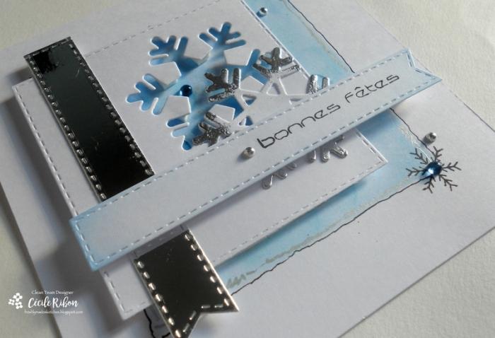carte-fms258-dscn6565