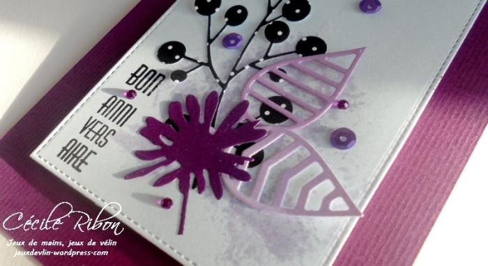 carte-anne-dscn7743