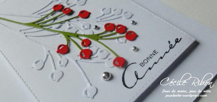 carte-maniak144-dscn7980