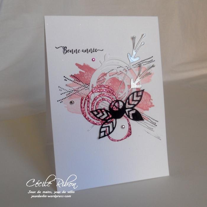 carte-laura-dscn8512