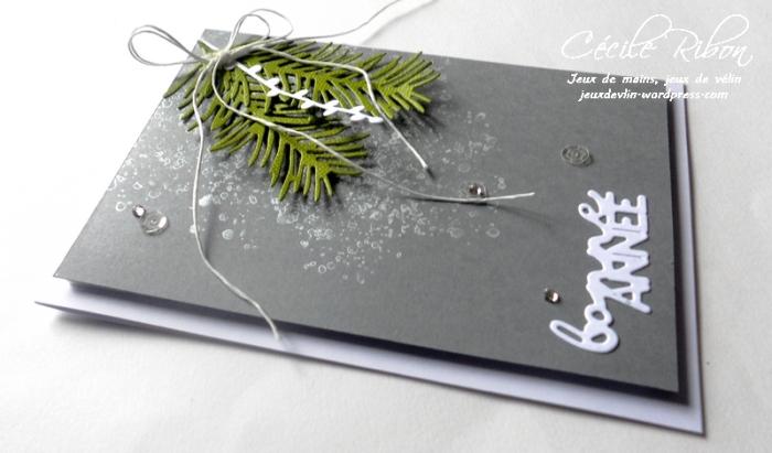 carte-veronique-dscn8140