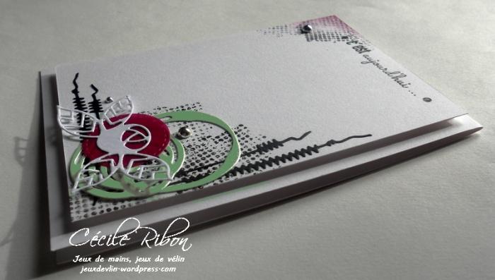 Carte AID10 - DSCN9162
