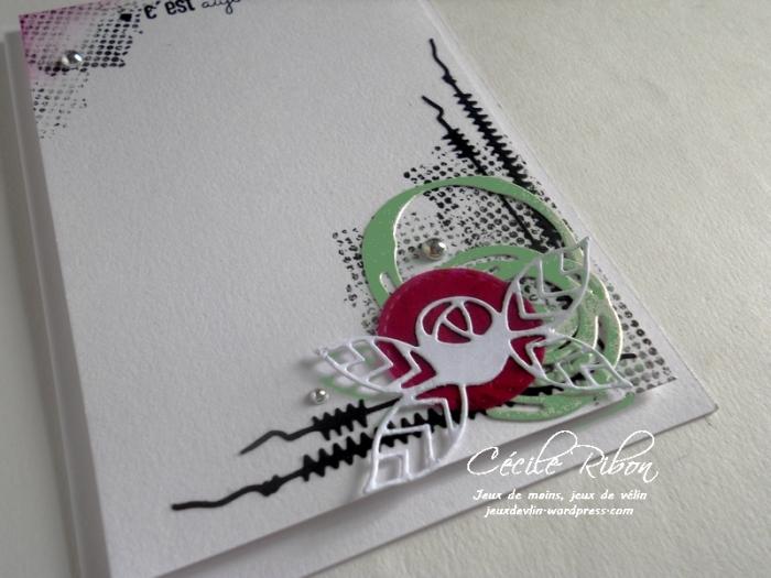 Carte AID10 - DSCN9166