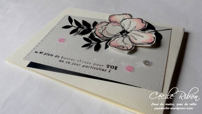 carte-ana-dscn8919