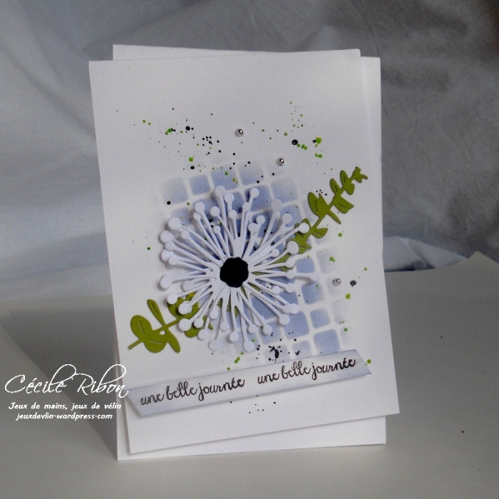 Carte CTD433 - DSCN9228