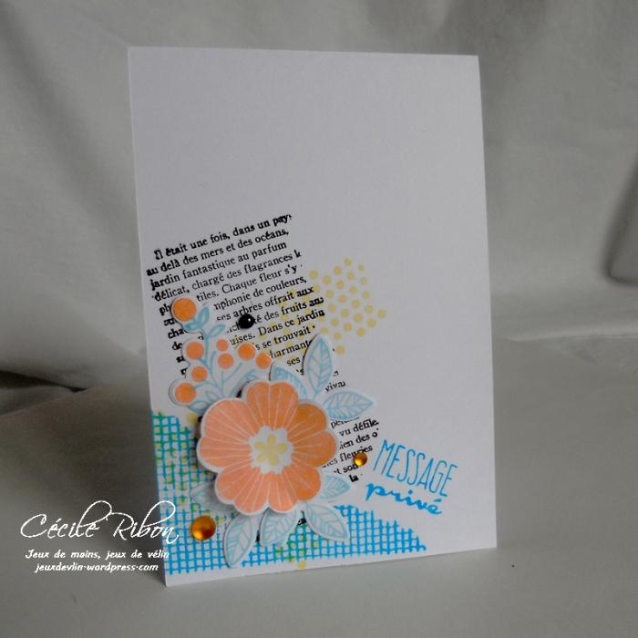 Carte CTD435 - DSCN9513