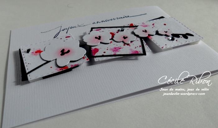 Carte NatBr - DSCN9491