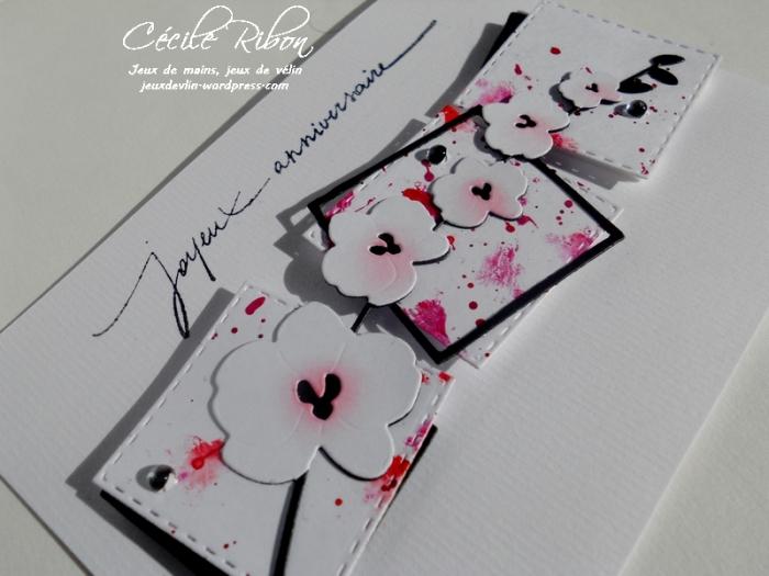 Carte NatBr - DSCN9500