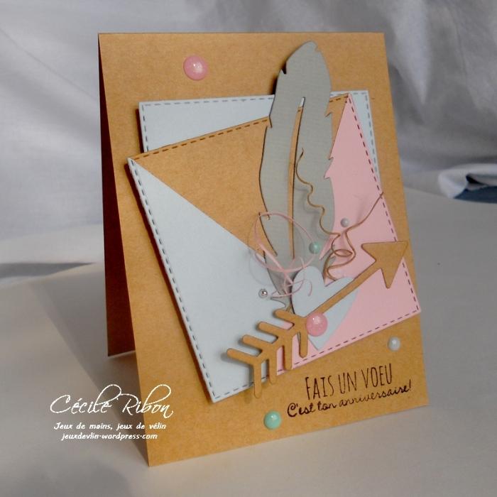 Carte PCC479 - DSCN9248