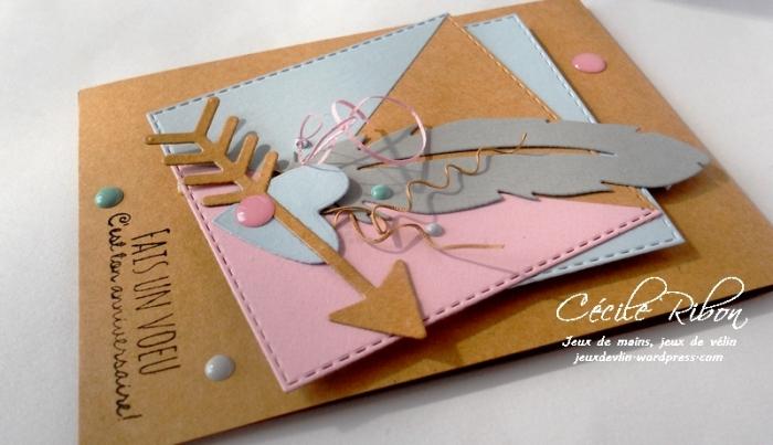 Carte PCC479 - DSCN9250