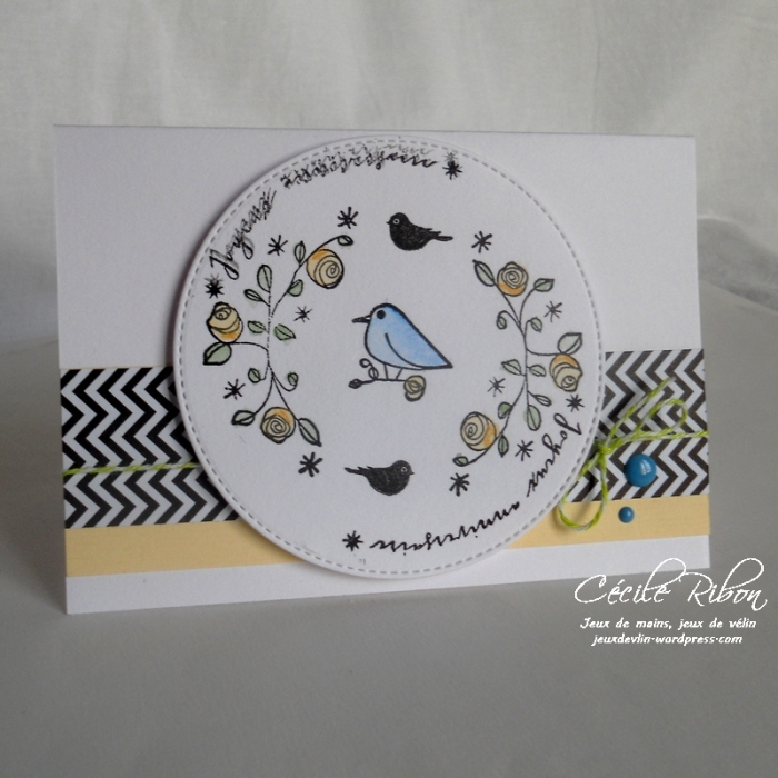 Carte CTD436 - DSCN9684
