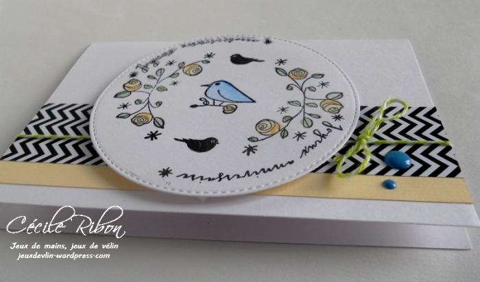 Carte CTD436 - DSCN9688