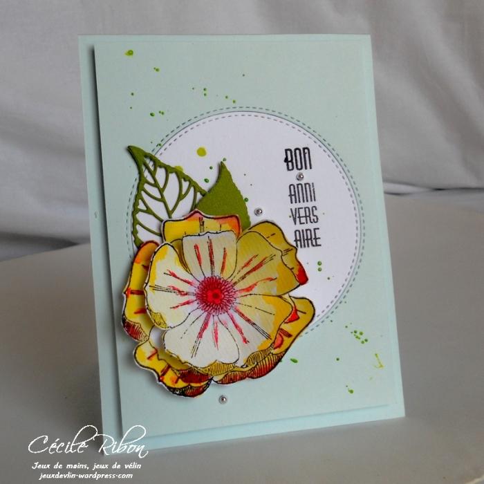 Carte CTD437 - DSCN9781