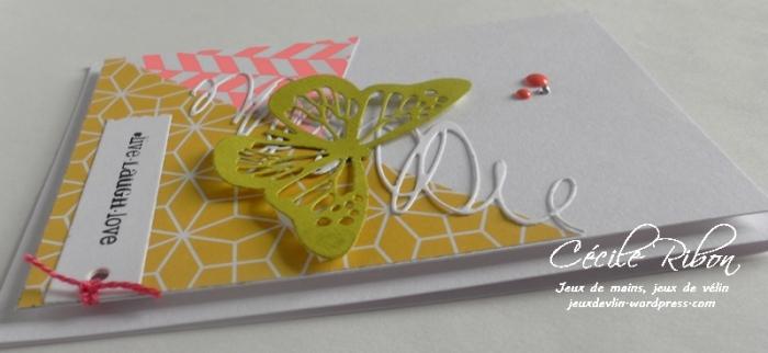 Carte CTD438 - DSCN9912