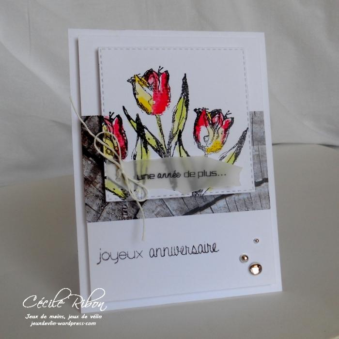 Carte FUSION14 - DSCN9765