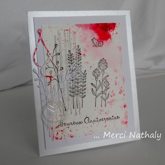 Carte XBd Nathaly - DSCN9986