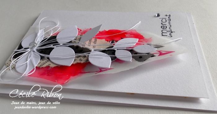 Carte AID13 - DSCN0058