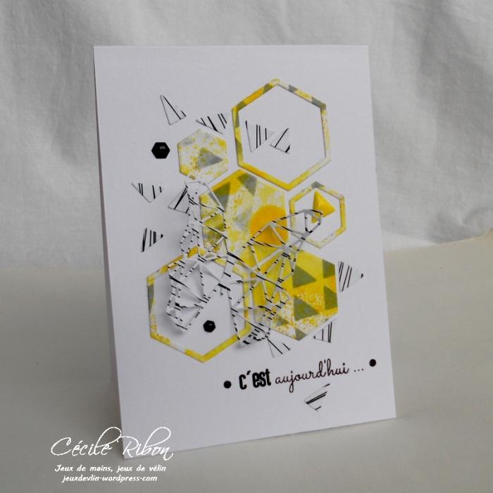 Carte AID15 - DSCN0495