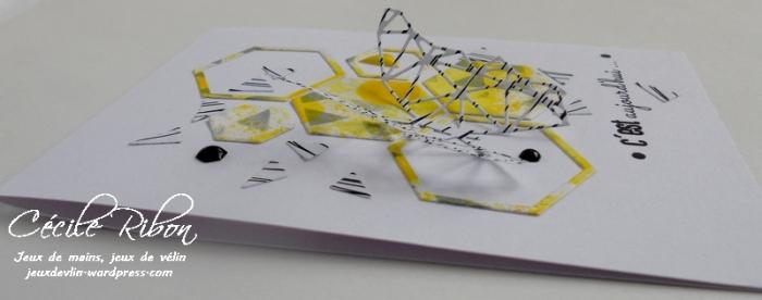 Carte AID15 - DSCN0502