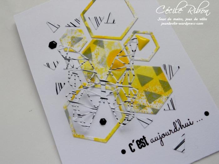 Carte AID15 - DSCN0510