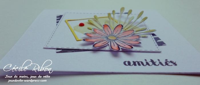 Carte CTD446 - DSCN0990