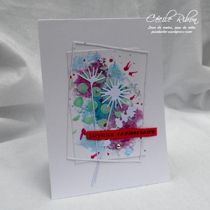 Carte CTD448 - DSCN1191