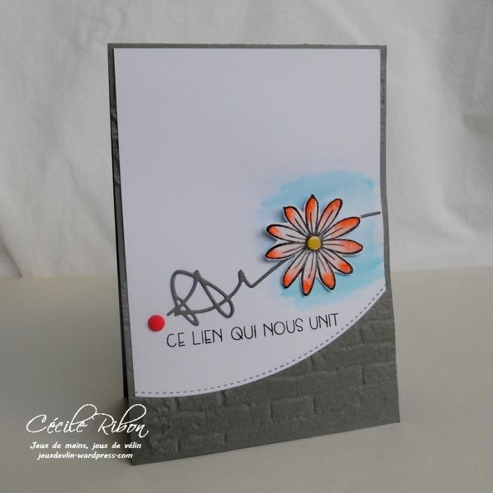 Carte FUSION19 - DSCN1048