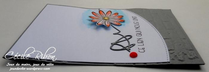 Carte FUSION19 - DSCN1056