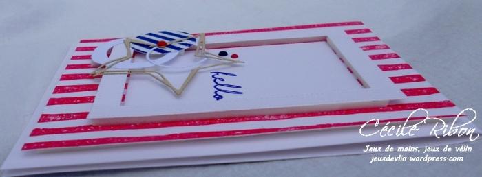 Carte FUSION20 - DSCN1310