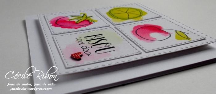 Carte Maniak155 - DSCN0967