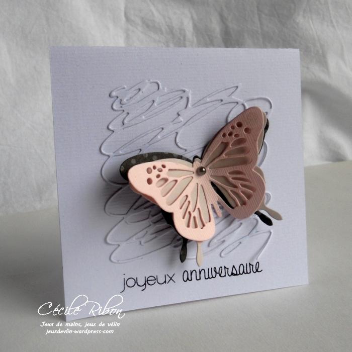 Carte PCC495 - DSCN1341