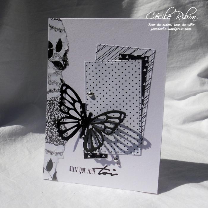Carte Scrap&co1 - DSCN1070