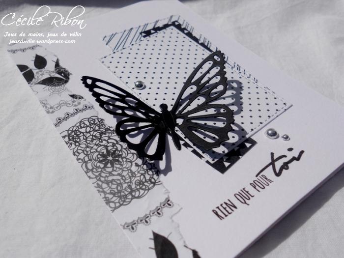 Carte Scrap&co1 - DSCN1079
