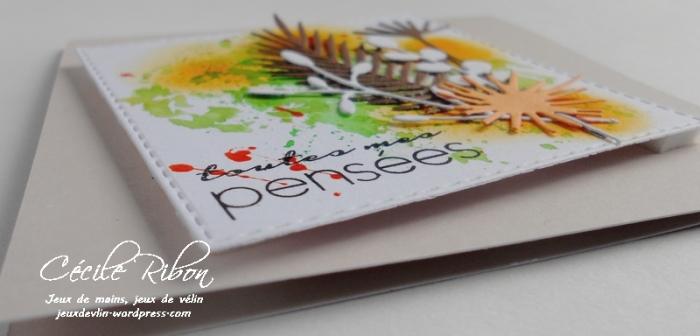 Carte CTD449 - DSCN1390