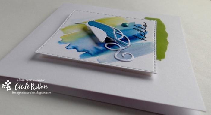 Carte FMS296 - DSCN1445