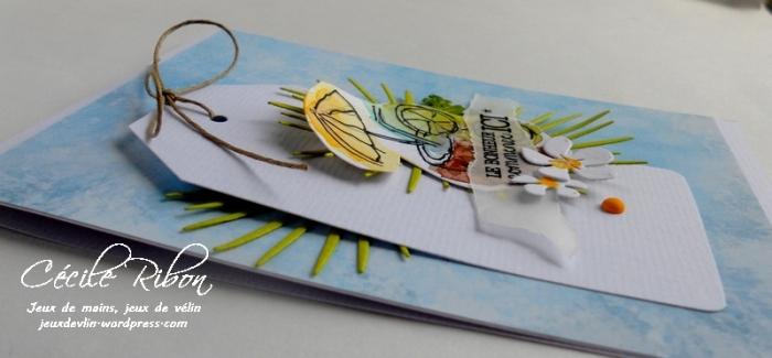 Carte LittleScrap19 - DSCN1498