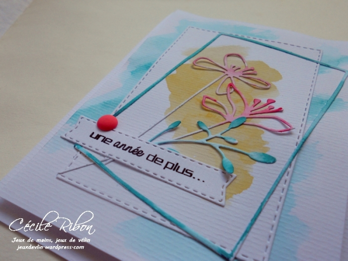 Carte Magy - DSCN0933