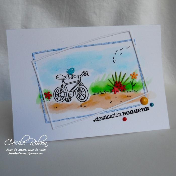Carte Maniak157 - DSCN1484