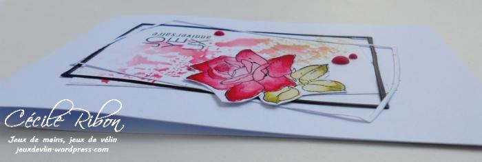 Carte Patricia - DSCN0775