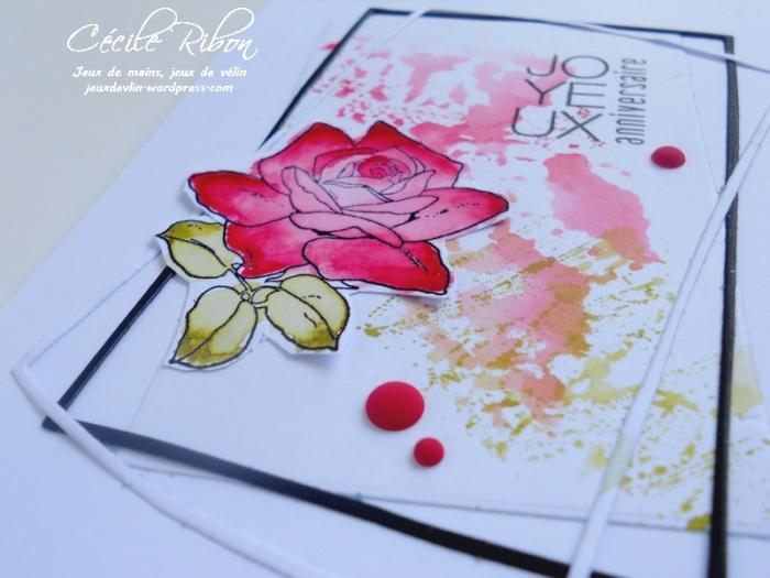 Carte Patricia - DSCN0787