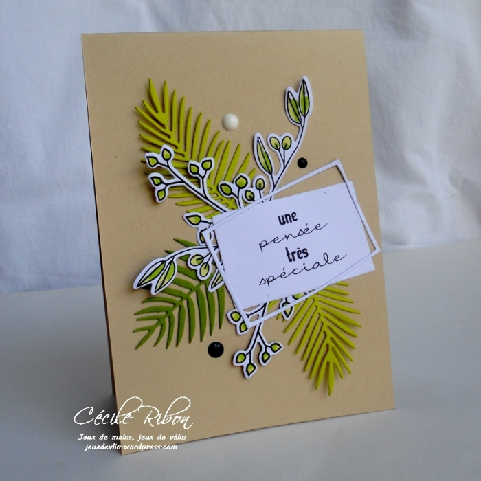 Carte CTD454 - DSCN1698