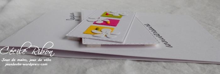 Carte CTD456 - DSCN2009