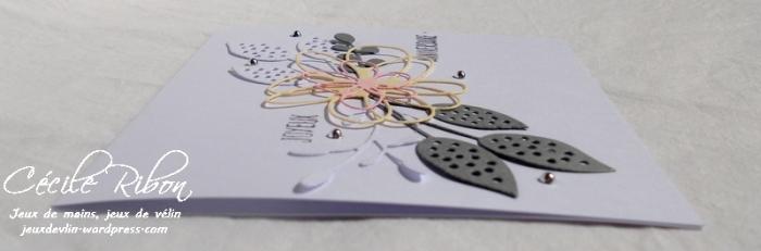 Carte CTD457 - DSCN2270