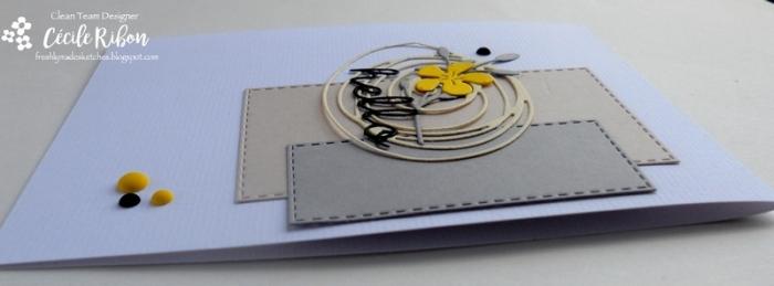 Carte FMS300 - DSCN1765