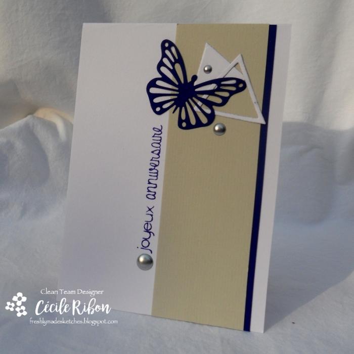 Carte FMS303 - DSCN2294