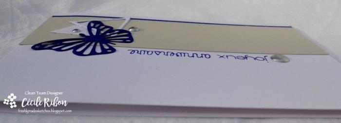 Carte FMS303 - DSCN2298
